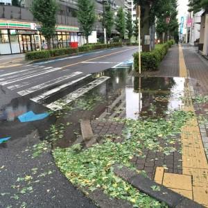 台風過ぎて
